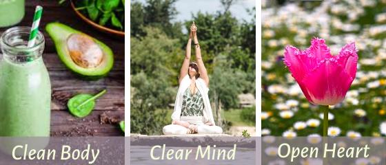 odem2020 yoga & detox Retreat
